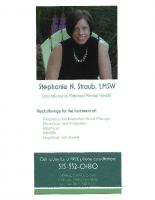 Stephanie Straub Brochure