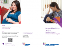 Zucker-HillsidePerinatal Inpatient Brochure